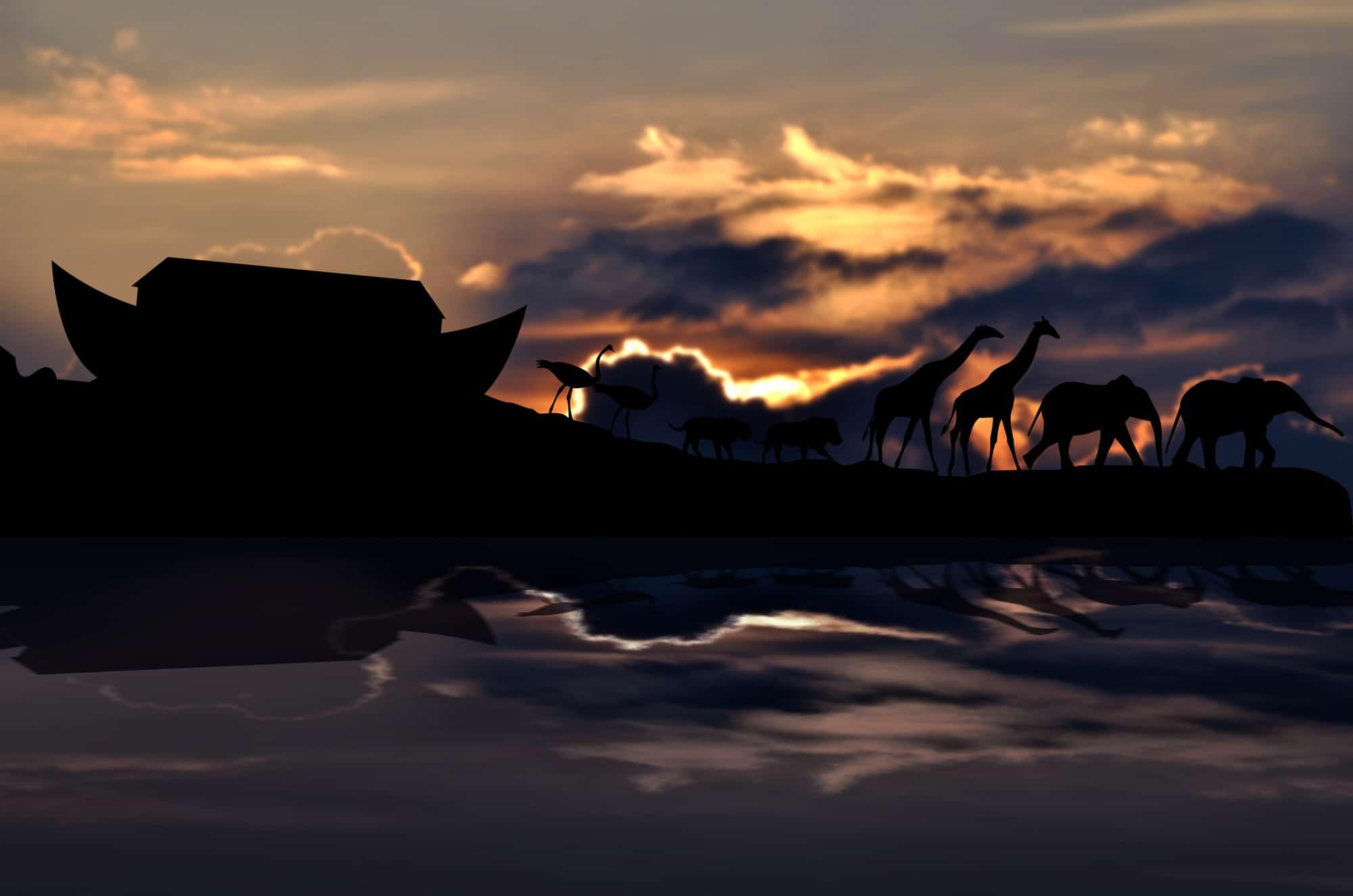 GRACE – THE DAYS OF NOAH
